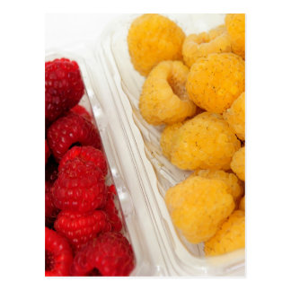 Red And Golden Raspberries Postcard