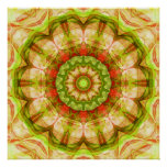 Red and Green Apples Mandala (120) Poster