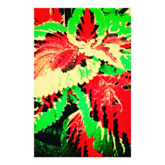 Red And Green Fern Custom Stationery
