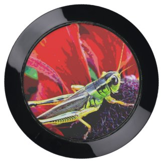 Red and Green Grasshopper USB Charging Station