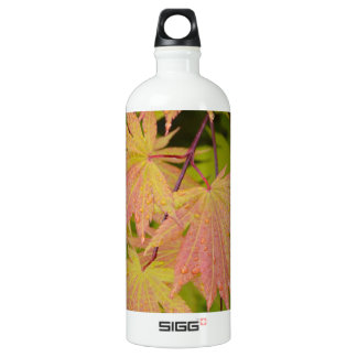 Red and green japanese maple leaves aluminum water bottle
