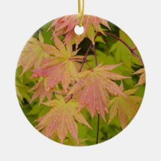 Red and green japanese maple leaves ceramic ornament