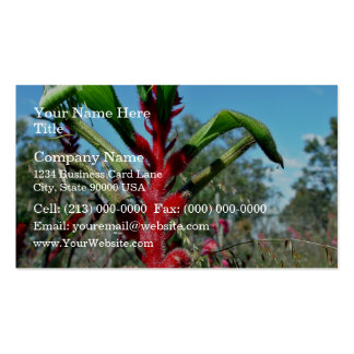 Red and green kangaroo paw flower business cards