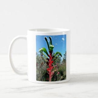 Red and green kangaroo paw flower coffee mug