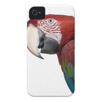 Red-and-green Macaw - Ara chloropterus iPhone 4 Case-Mate Case