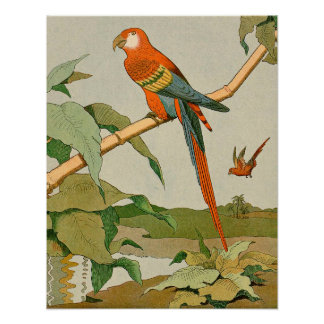 Red-and-Green Macaw Jungle Parrot Print