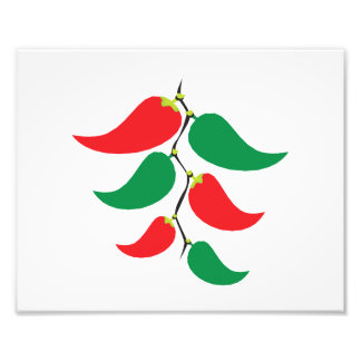 Red and Green Pepper Graphic on a string Photo Art