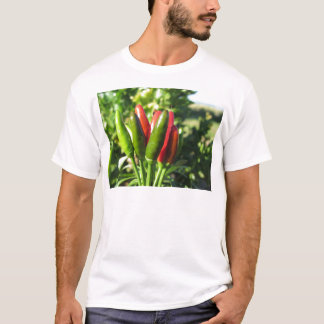 Red and green peppers hanging on the plant T-Shirt