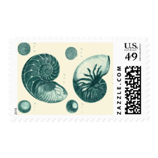 Red and Green Seashell Art Postage