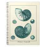 Red and Green Seashell Art Spiral Note Book