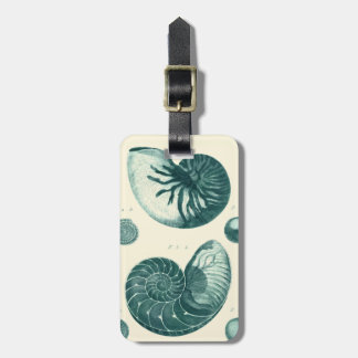 Red and Green Seashell Art Tag For Luggage