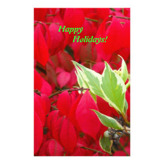 Red and Green Stationery