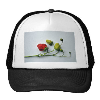 Red and Green Strawberries Trucker Hat