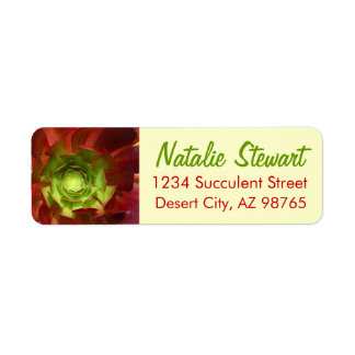Red and Green Succulent by Amy Vangsgard Label