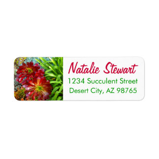 Red and Green Succulent by Amy Vangsgard Return Address Label