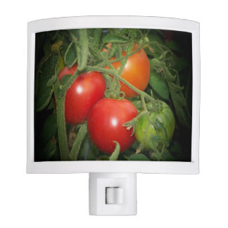Red and Green Tomatoes on Vine Kitchen Night Light