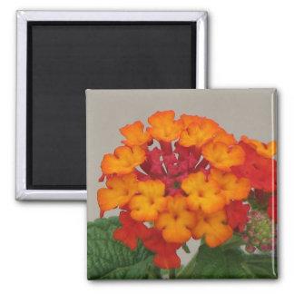 Red and Orange Lantana Refrigerator Magnet