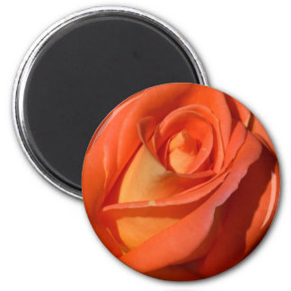 Red And Orange Rose 2 Inch Round Magnet