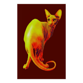 red and orange sphynx cat poster