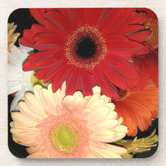 Red and Peach Gerbera Daisy Flowers Beverage Coaster
