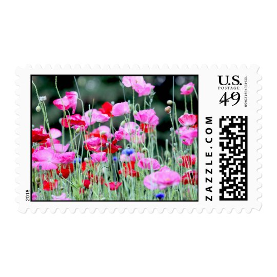 Red and Pink Poppies Postage
