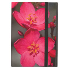 Red And Pink Tropical Fiji Flowers Ipad Air Cases at Zazzle