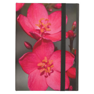 Red and Pink Tropical Fiji Flowers iPad Air Cases