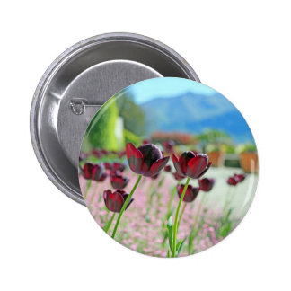 Red and Pink Tulip Blossoms Pin
