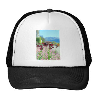 Red and Pink Tulip Blossoms Mesh Hats
