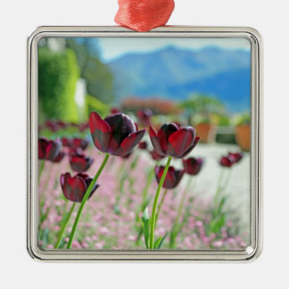 Red and Pink Tulip Blossoms Christmas Tree Ornament