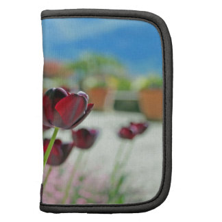 Red and Pink Tulip Blossoms Folio Planners