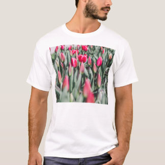 Red and Pink Tulips, Flower Field in Spring T-Shirt