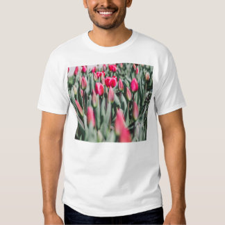 Red and Pink Tulips, Flower Field in Spring Tees