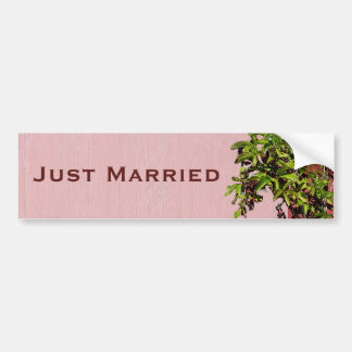 Red And Pink Wedding Climbing Ivy Just Married Bumper Stickers