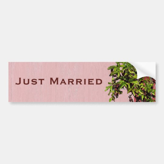 Red And Pink Wedding Climbing Ivy Just Married Bumper Sticker