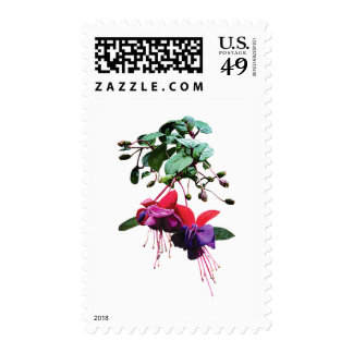 Red and Purple Fuschia Postage