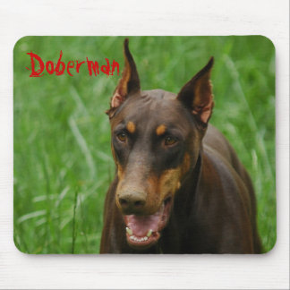 Red and Rust Doberman Mouse Pad
