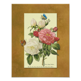 Red and White Botanical Roses Faux Grunge Poster