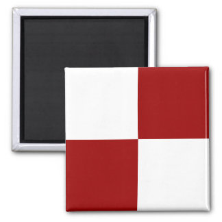 Red and White Checkered Magnet