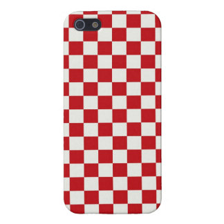 Red and White Checkered Pattern Country BBQ Colors iPhone SE/5/5s Cover