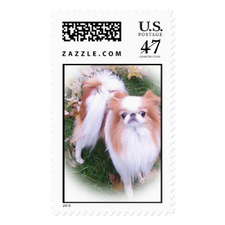 Red and White Chin Postage