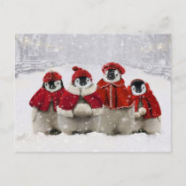 Red and White Christmas Penguins Design Holiday Postcard