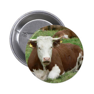 Red And White Cow On Green Grass Pinback Button