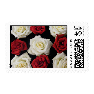 Red and White English Box Rose Arrangement Stamps