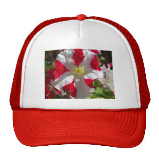 Red and White Flower Hats