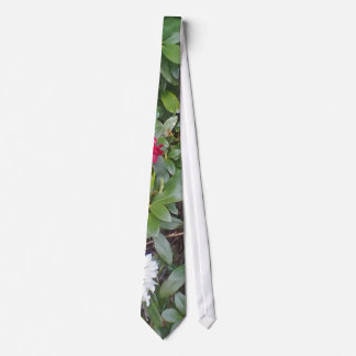 red and white flower tie