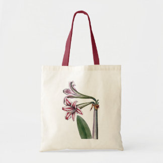 RED AND WHITE FLOWERS (AMARYLLIS) Tote Bag