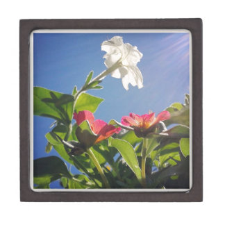 Red and White Flowers and Blue Sky Keepsake Box