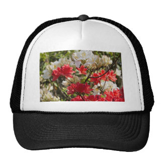 Red and white flowers mesh hats