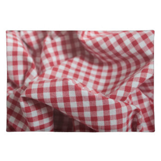 Red and White Gingham Fabric Cloth Placemat